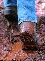 feet stuck in mud