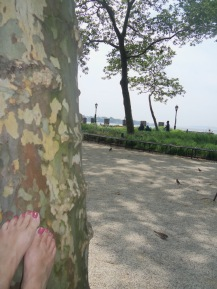 Relaxing in Battery Park