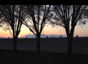 sunsetspring