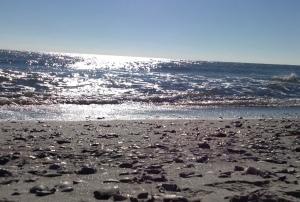 mb beach