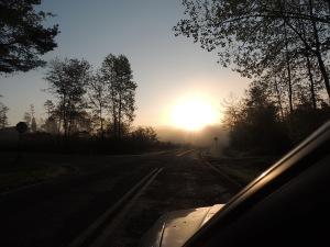 earlymorning light2