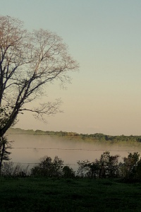 earlymorninglight