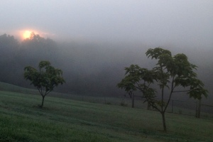 morningfog