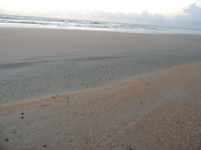 grains of sand.JPG