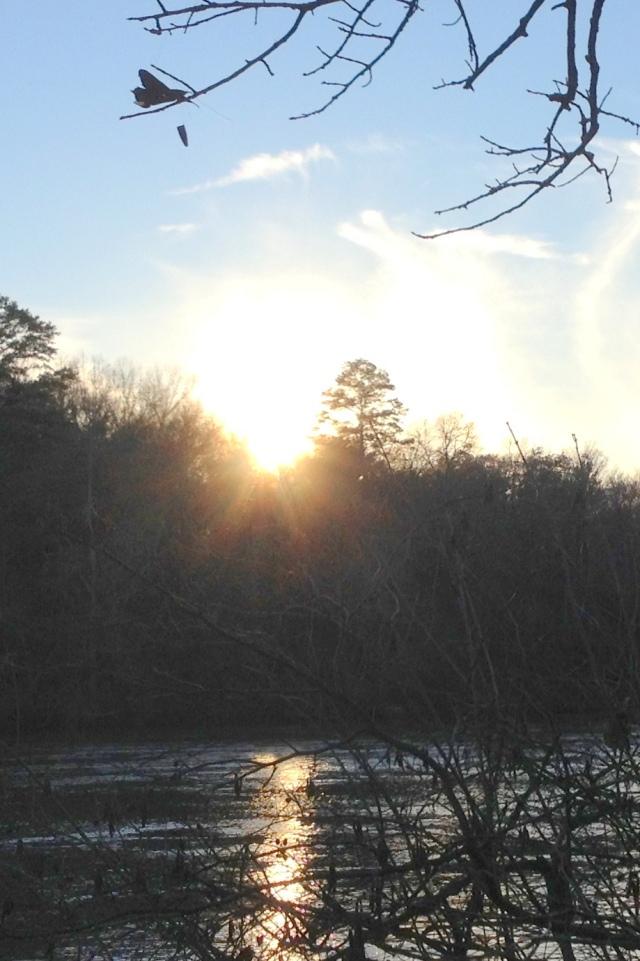silent sunday.JPG