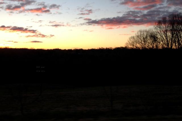 morninglight3
